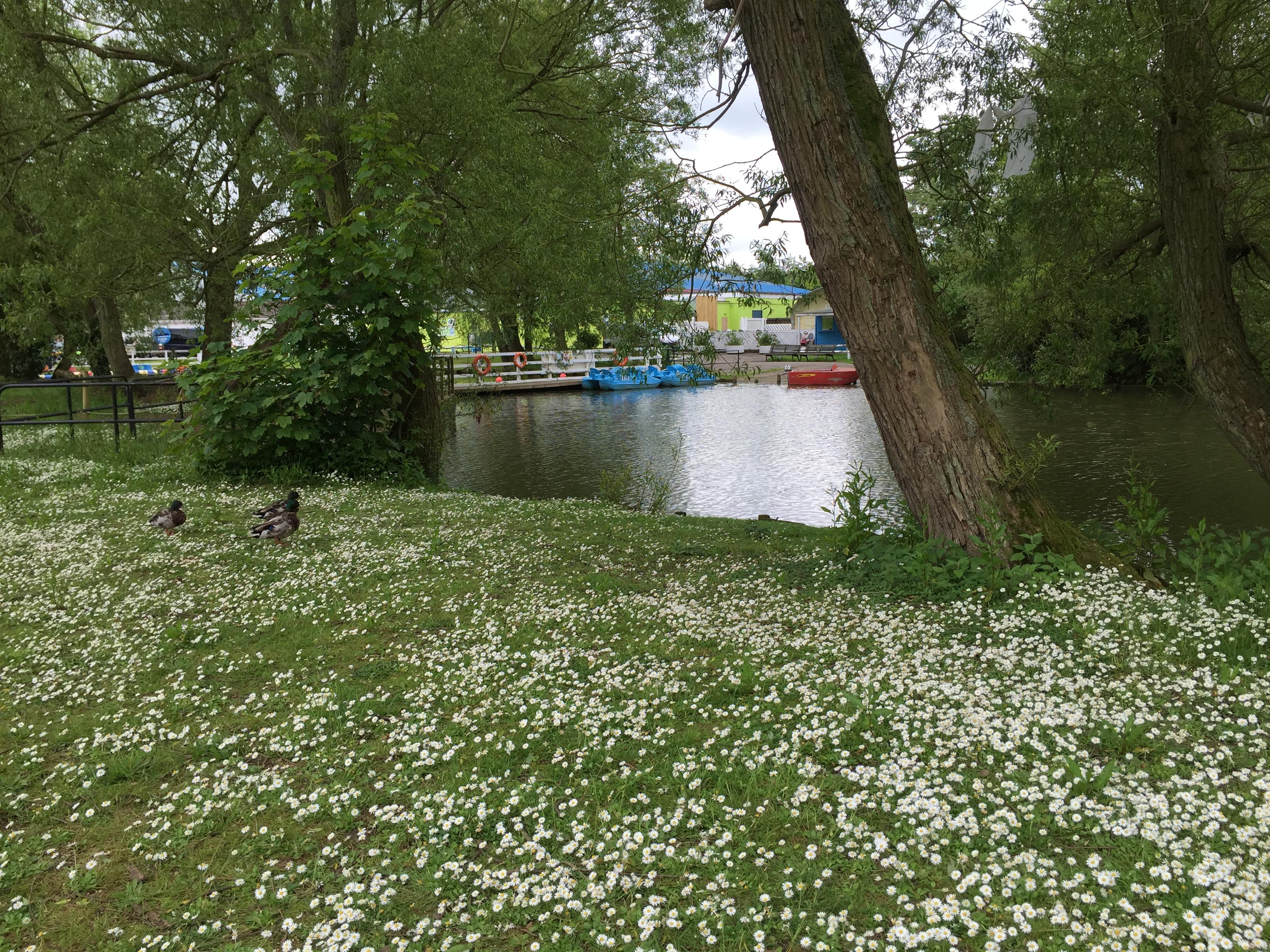 primrose park haven scarborough review caravan park