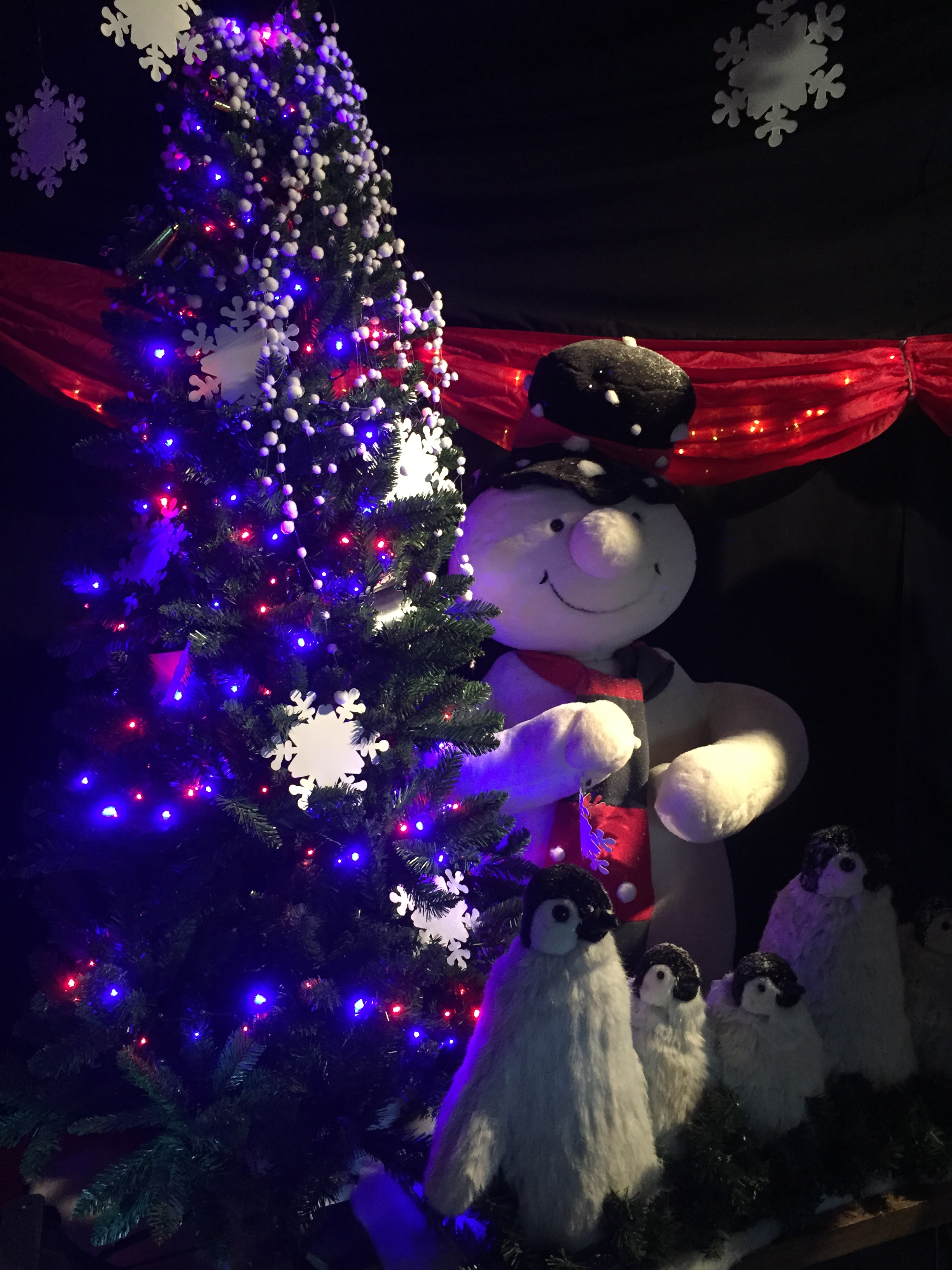 cadbury garden centre christmas 2016 pets fish santa grotto bristol soft play family review of the grotto snowman