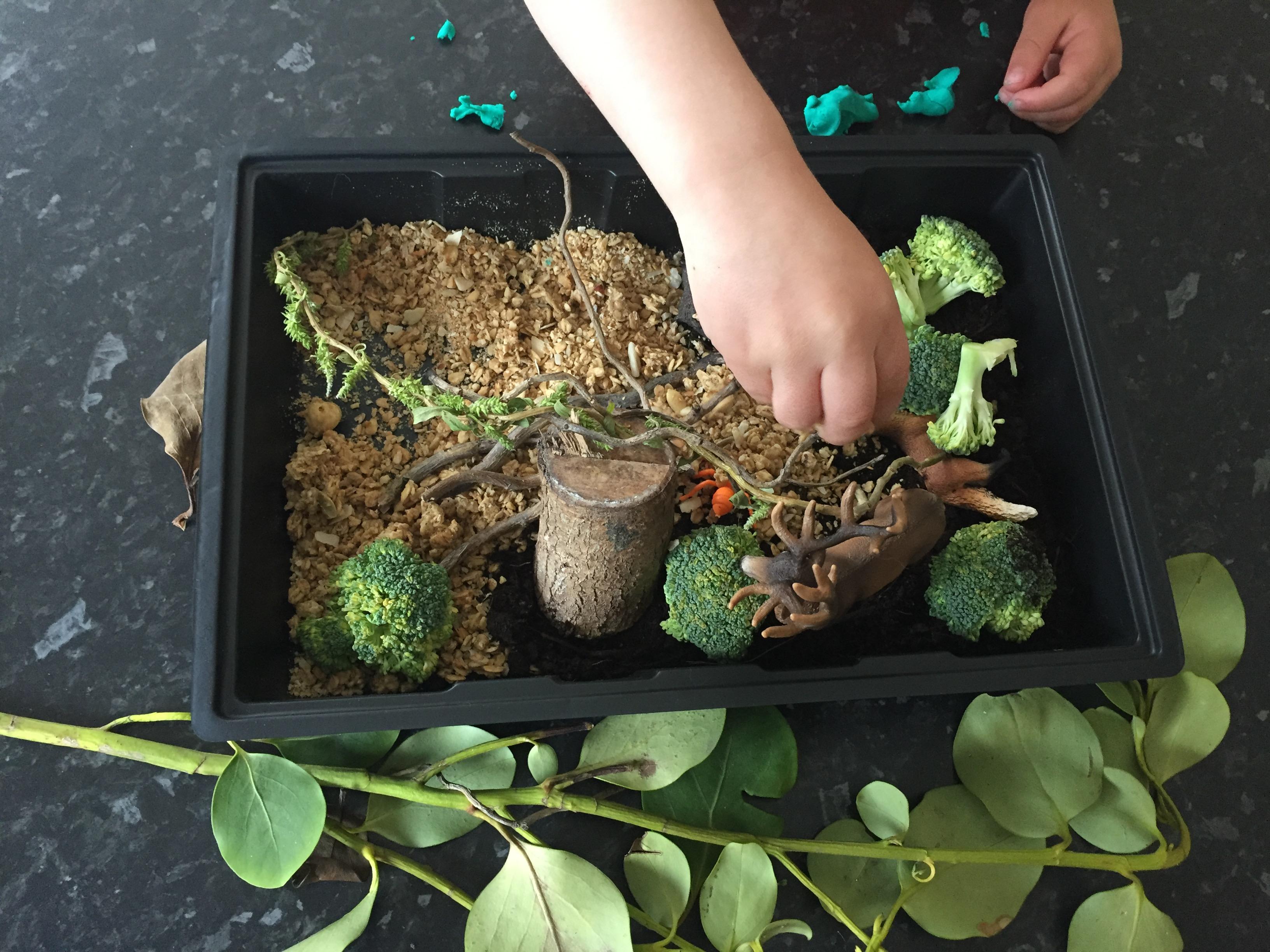 forest sensory STEM play set using schleich forest dweller figures
