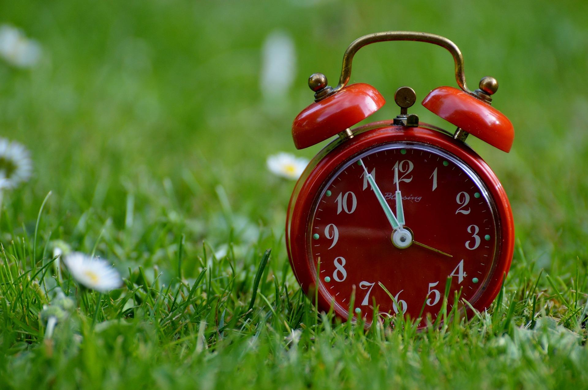 make time during a digital detox