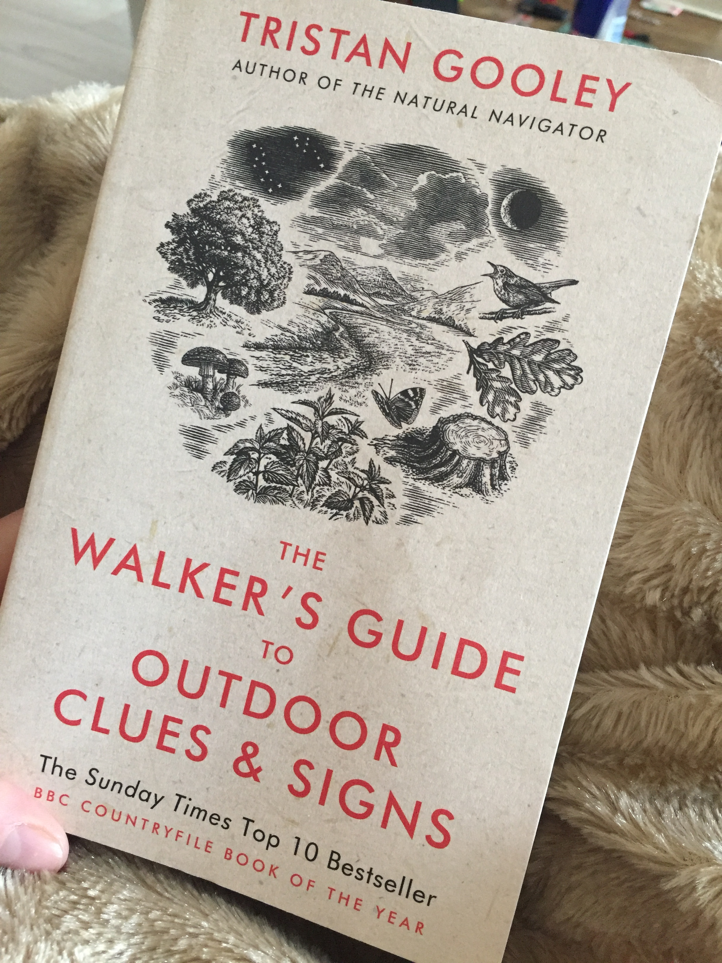 The Walkers Guide to Outdoor Clues and Signs - Tristan Gooley